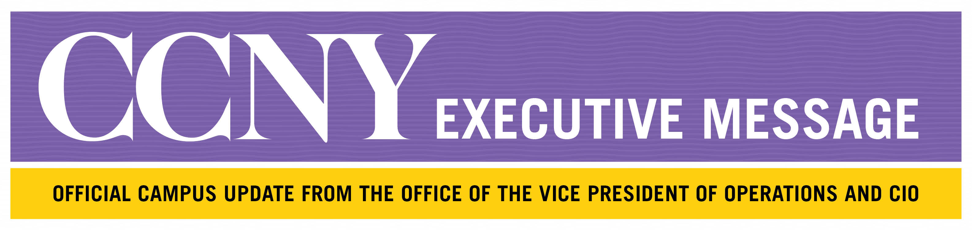 CCNY VP Operations CIO